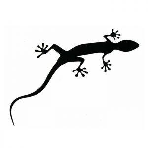 Наклейка-геккон на кузов Audi Gecko Film