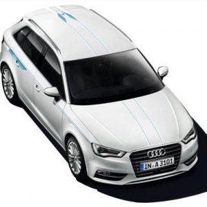Акцентные полосы для Audi A3 (8V) 2014-н.в.